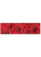 Фотокартина на холсте Розы, 50*180 см