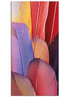 Фотокартина на холсте Перья, 60*120 см