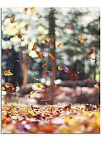Фотокартина на холсте Листопад, 70*90 см