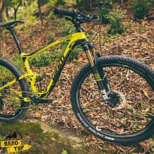 Велопрогулка в лесу