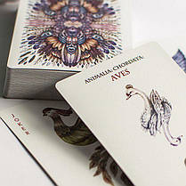 Карты игральные | Bicycle AVES Uncaged Playing Cards by LUX Playing Cards, фото 2