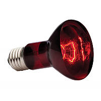 Лампа для террариума, Exo Terra Heat Glo Infrared R20, 75 Вт