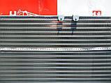 Радиатор системы охлаждения ВАЗ 1117-1119 Калина, фото 4