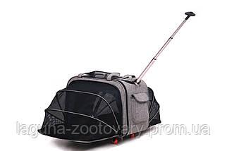 Кейс-переноска 60х32х46см для собак и котов ДоДо Пет Спейс Грей, серый, фото 2