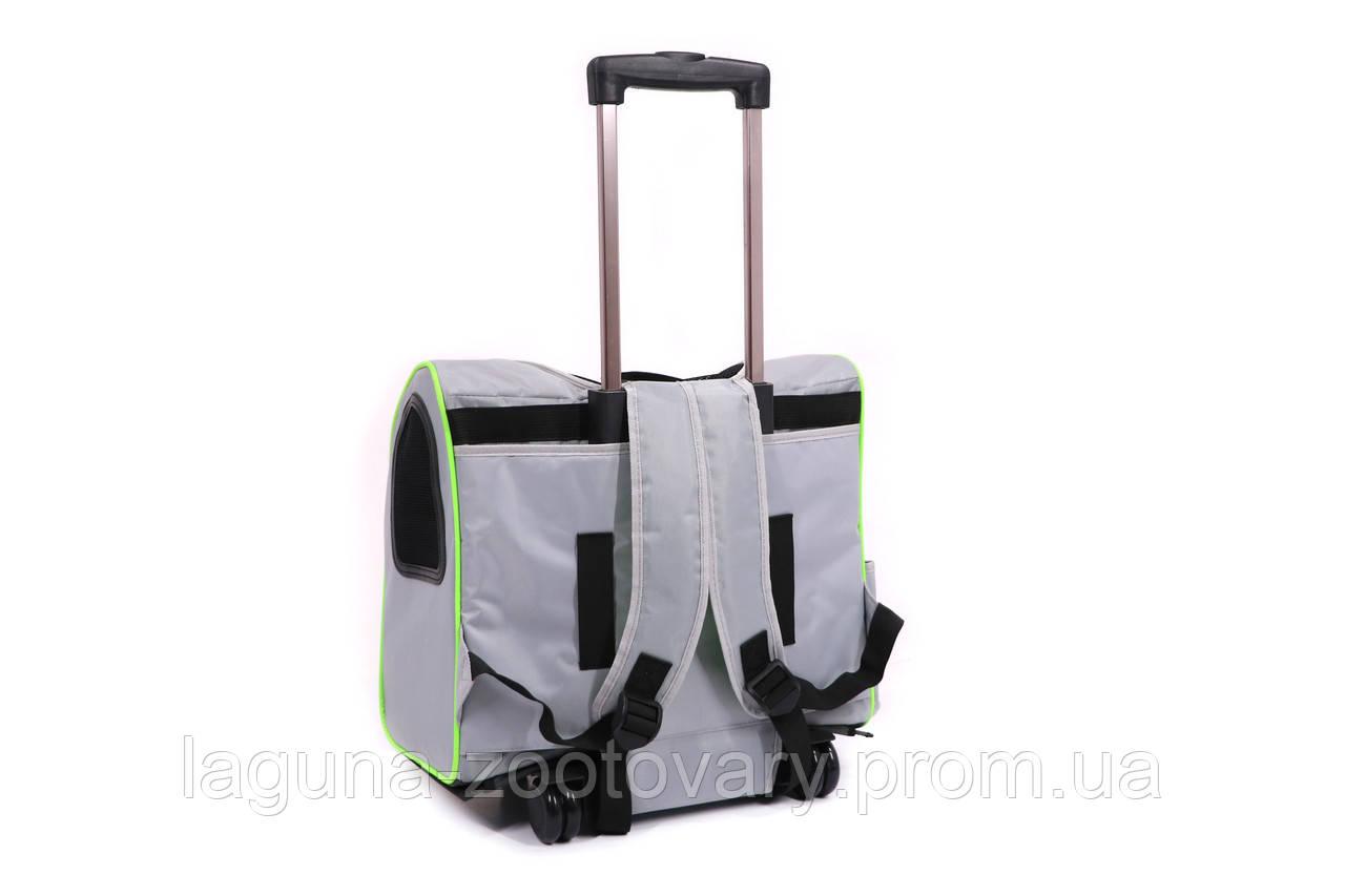 Кейс-переноска-рюкзак 45х24х45см для собак и котов до 10кг  Do Do Pet, Linno Lime серый салатовый