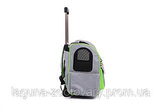 Кейс-переноска-рюкзак 45х24х45см для собак и котов до 10кг  Do Do Pet, Linno Lime серый салатовый, фото 2