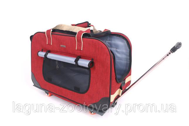 Кейс - переноска 62х35х46см для собак и котов до 20кг Do Do Pet, Gooddy Red красный, фото 2