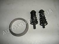 Р/к катализатора ВАЗ 2110 (железное кольцо, 2 болта, 2 пружины)