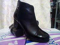 Кожаные демисезонные ботинки,ботильоны больших размеров Romax