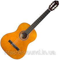 Классическая гитара Valencia VC102