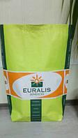 Насіння соняшнику Євраліс ЄС Баяно, фото 1