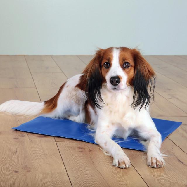 Охлаждающий коврик лежак для собак и кошек Pet Cool Mat. - фото 1
