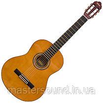 Классическая гитара Valencia VC254