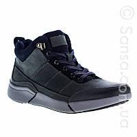 Ботинки Alpine Crown кожаные FN2 19d61b521f160