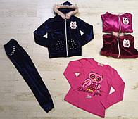 Велюровый костюм-тройка для девочек Seagull оптом , 4-12 лет.