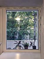 Окна и балкон WDS