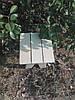 Табурет деревянный липа маленький, фото 2