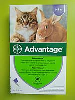 Адвантейдж капли от блох для кошек больше 4 кг
