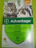 Адвантейдж капли от блох для кошек и декоративных кроликов 1 пипетка