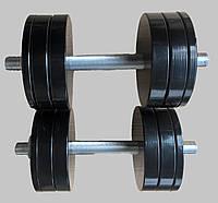 Гантели наборные металлические с покрытием 2*16 кг (Общий вес 32 кг) (металеві гантелі розбірні з покриттям)