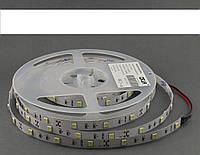Светодиодная лента 12V Epistar 5050SMD 30шт IP20 белый