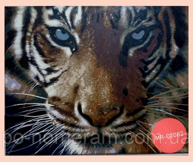 нарисованная картина по номерам тигр
