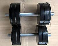 Гантели наборные металлические с покрытием 2*22кг (Общий вес 44кг) (металеві гантелі розбірні з покриттям)