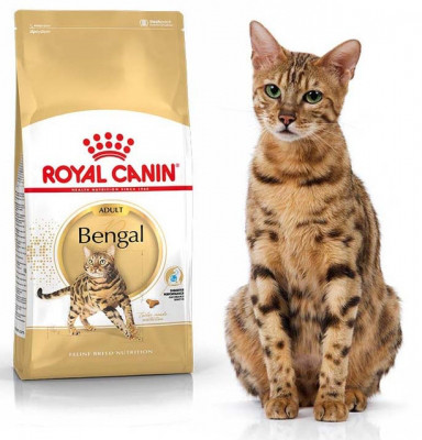 Royal Canin (Роял Канин) BENGAL ADULT Сухой корм для бенгальских кошек старше 12 месяцев, 400 г