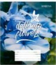 Зошит загальний Knopka, 96 аркушів, клітинка, Delicate flower, 8/96, 00033