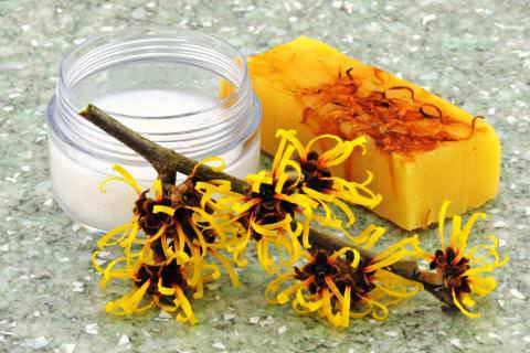 7 полезных свойств гамамелиса для вашей кожи