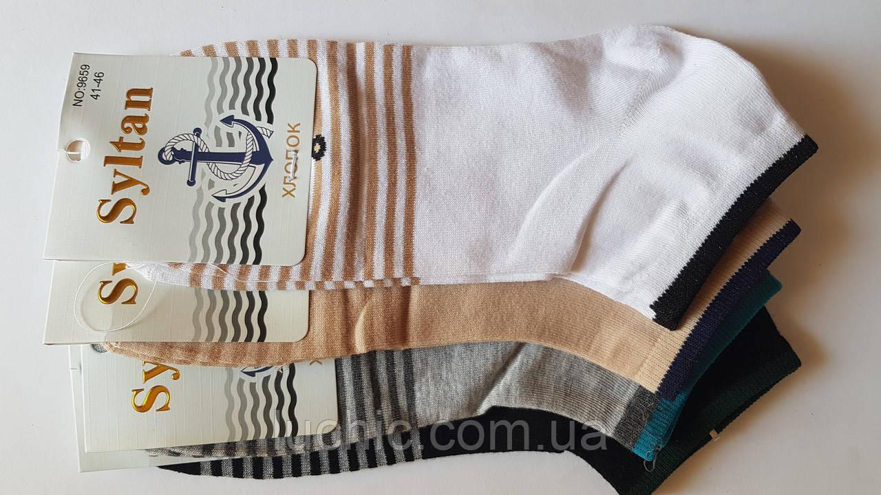 Султан Мужские носки (хлопок) 41-46р 12шт в уп.