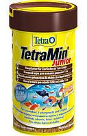 TetraMin Junior (ТетраМин для подрастающих мальков аквариумных рыбок.), 100мл