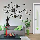 Інтер'єрна наклейка на стіну Дерево з фоторамками (022186), фото 4