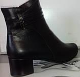 Ботинки демисезонные на устойчивом каблуке из натуральной кожи от производителя модель СВ225-1, фото 5