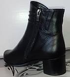 Ботинки демисезонные на устойчивом каблуке из натуральной кожи от производителя модель СВ225-1, фото 4