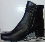 Ботинки демисезонные на устойчивом каблуке из натуральной кожи от производителя модель СВ225-1, фото 2
