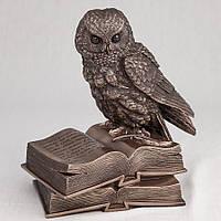 Статуэтка Филин на книгах Veronese 17 см 74109A4, символ мудрости