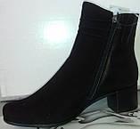 Ботинки демисезонные на устойчивом каблуке из натуральной замши и кожи от производителя модель СВ225, фото 2