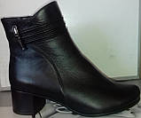 Ботинки демисезонные на устойчивом каблуке из натуральной замши и кожи от производителя модель СВ225, фото 3