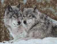 Набор для вышивки крестом Два волка