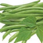 Семена спаржевой фасоли Джина 10 г