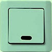 ВС10-1-1-ГФ Выключатель 1кл. со световой индикацией (фисташковый металлик)