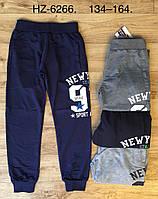 Спортивные брюки для мальчиков оптом, Active Sport, 134-164 рр., арт. HZ-6266, фото 1