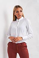 Однотонная женская блуза  Андора 2420 Xs Белый