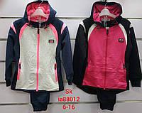 Спортивный костюм для девочек оптом, Setty Koop, 6-16 рр
