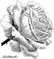 "Штамп ""Роза"" La Blanche 1068"