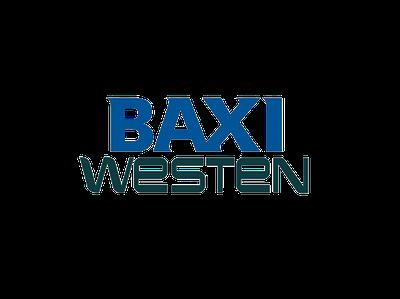Запчасти для котлов Baxi/Westen