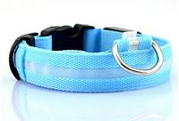 Светящийся ошейник синий S (30-36 см)