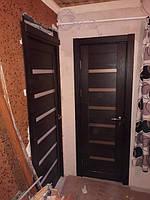 dveri_mezhkomnatnye_quest__rs_q5_oreh_makadamiya.jpg