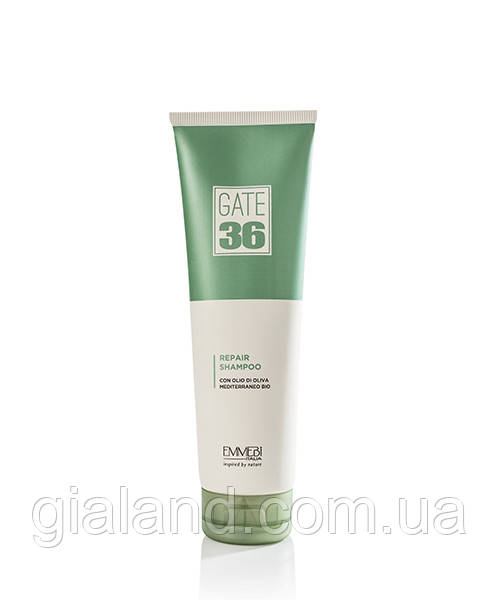 Emmebi GATE 36 OLIVA BIO REPAIR SHAMPOO Восстанавливающий безсульфатный шампунь